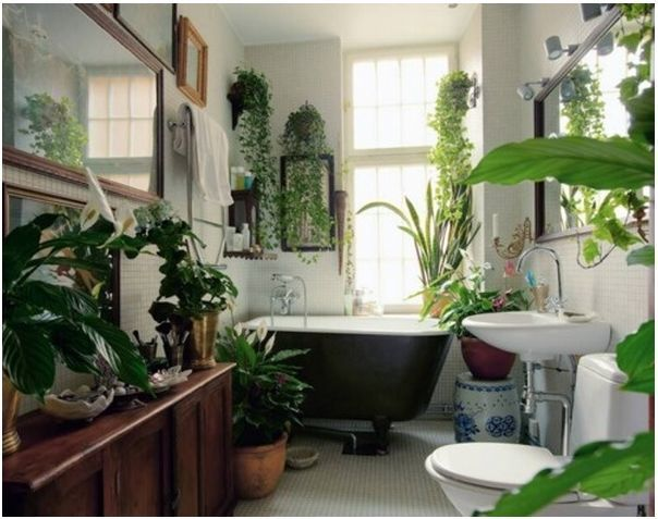 design-tricks-plants-in-the-house-pinterest1